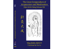Great Compendium of Acupuncture and Moxibustion Volume VIII